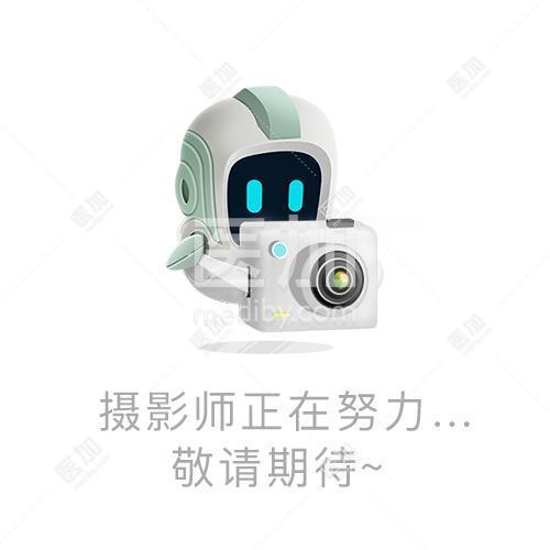 Erbe德国爱博百克钳芯20195-232